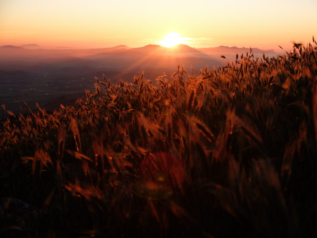 Monte Kumeta al tramonto – domenica 7 giugno